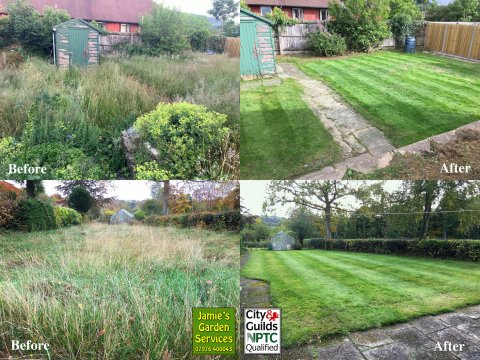 Overgrown Garden Clearance and Retreval