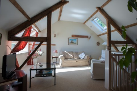 Holiday cottage, mid wales, dogs welcome
