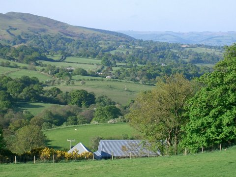 Holidays, countryside, dogs, dark skies, mid wales